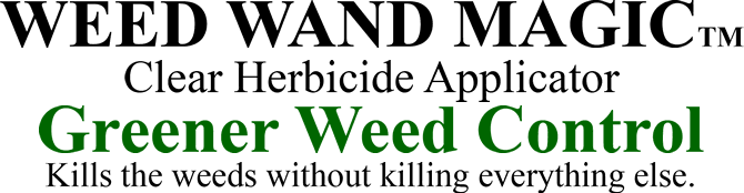 WEED WAND MAGIC(TM) / Clear Herbicide Applicator / Greener Weed Control / Kills the weeds without killing everything else.